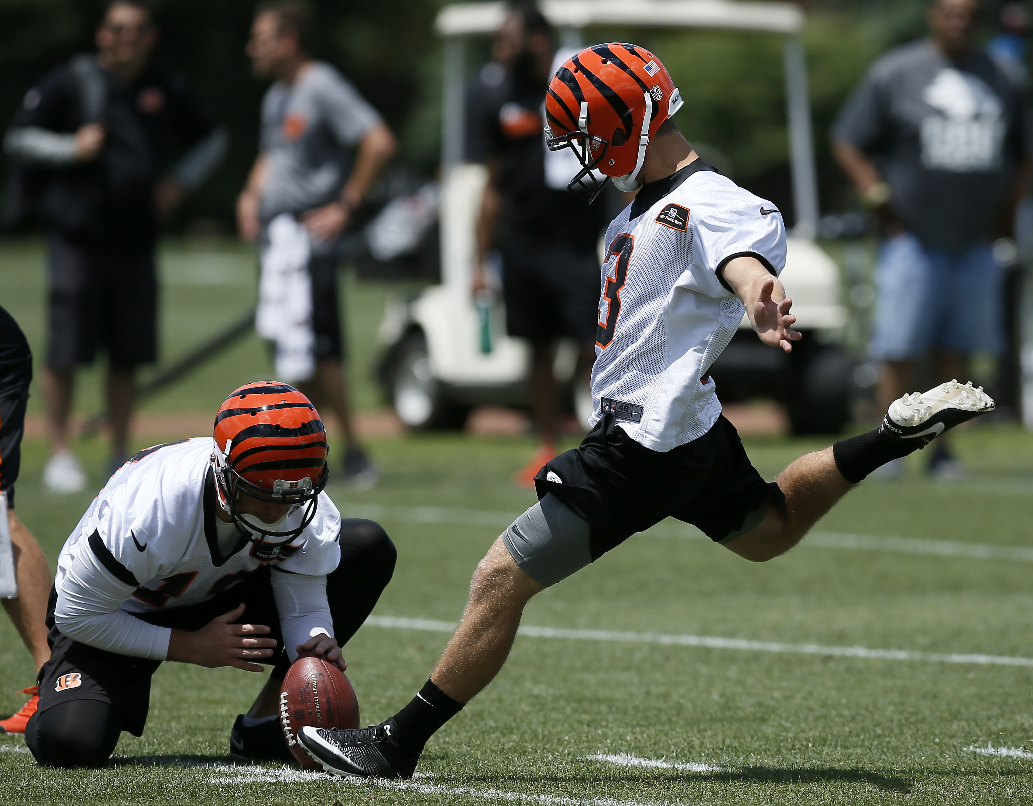 4300726c Cincinnati Bengals: Analyzing the specialists